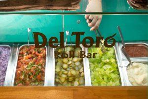 Del Toro roll bar